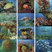 Ocean Glory Personalized 2022 Calendars