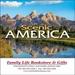 Scenic America Mini Wall Calendar - 2020