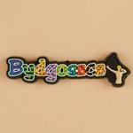 Flexible Magnet - Bydgoszcz, City Name