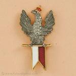 Lapel Pin - Spirited Polish Eagle