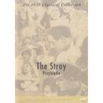 Stray, The - Przybleda DVD