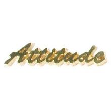 Attitude Lapel Pin