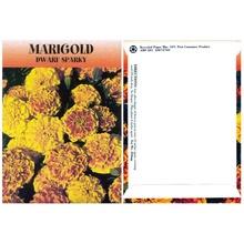 Marigold Seed Packs