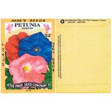 Petunia Seed Packs