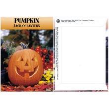 Pumpkin Seed Packs