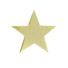 Star Lapel Pins