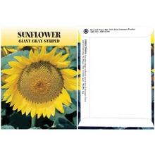 Sunflower Seed Packs