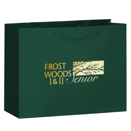 Imprinted Gloss 13 x 5 x 10 Shopping Bags