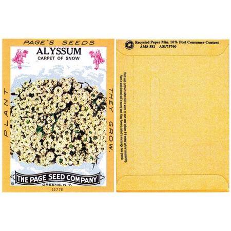Alyssum Flower Seed Packs