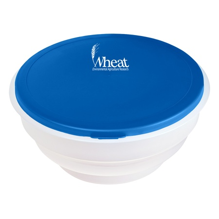 Collapsible Big Lunch Bowl