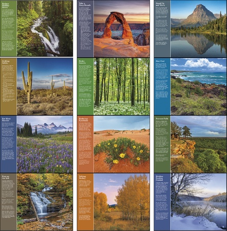 Healthy Living 2021 Promotional Calendars