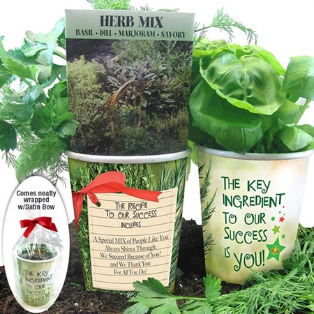 Key Ingredient Herb Planter Set