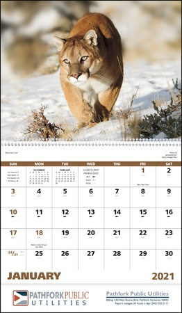 Wildlife Portraits 2021 Custom Appointment Calendars