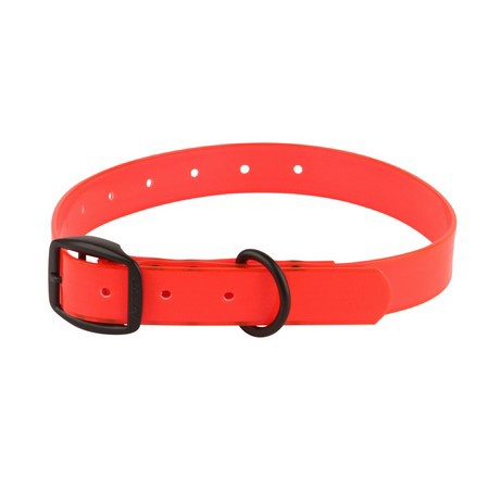 Avery, Cut-to-Fit Dog Collar