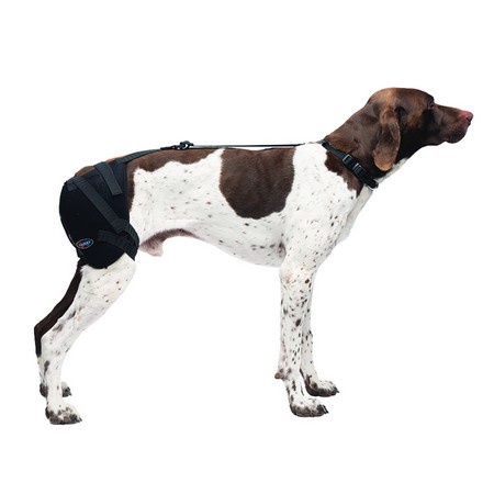Caldera, Hip Pet Therapy Wrap with Therapy Gel, Medium