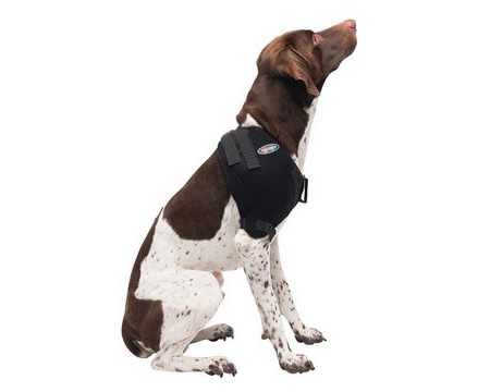 Caldera, Shoulder Pet Therapy Wrap with Therapy Gel, Medium