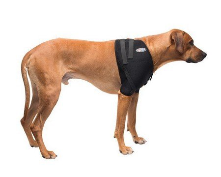 Caldera, Shoulder Pet Therapy Wrap with Therapy Gel, Large