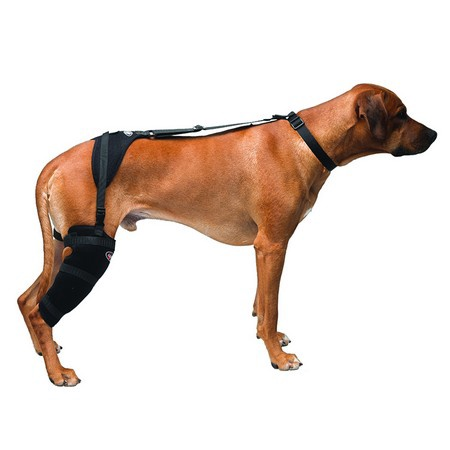 Caldera, Tarsal Pet Therapy Wrap with Therapy Gel, Large