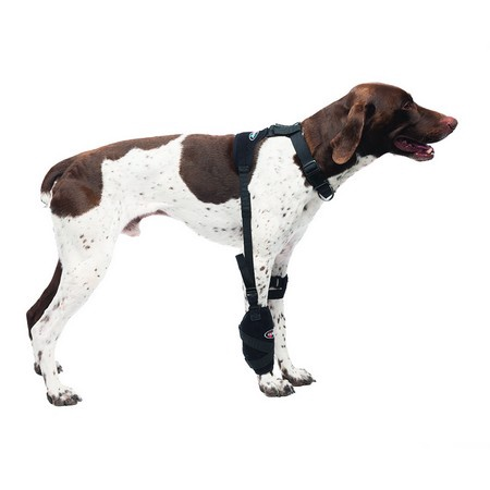 Caldera, Universal Pet Therapy Wrap, Carpel/Elbow with Therapy Gel, Medium