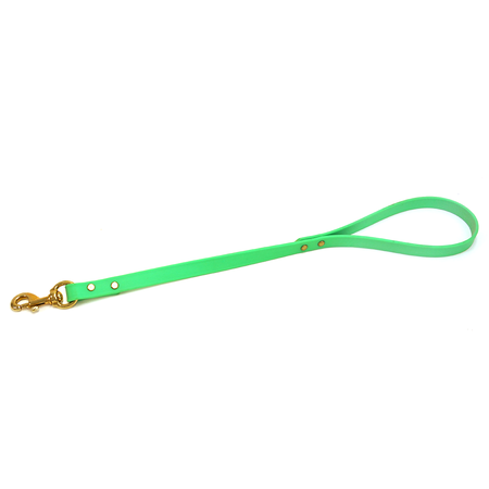 Custom Dura-Flex Dog Lead