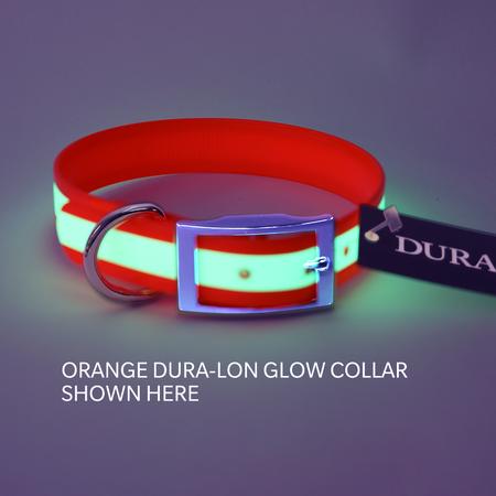 "Dura-Lon Glow Dog Collar, Standard, Light Green, 1"" Wide"
