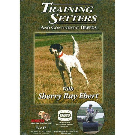 DVD, Training Setters & Continental Breeds by Sherry Ray Ebert