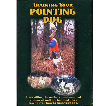 DVD, Training Your Pointing Dog featuring Scott Miller