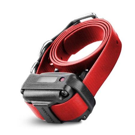 E-Collar Technologies, Small Receiver