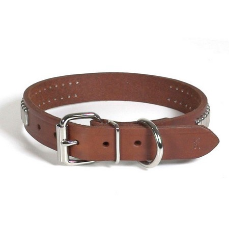 """Field Classic Harness Leather Dog Collar, 1"""" Wide"""