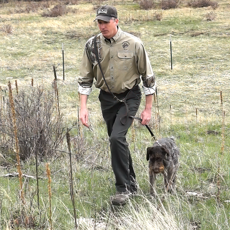 FieldKing Belgian Bridle Leather Jaeger Dog Lead, Black