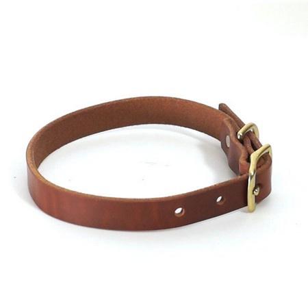 """FieldKing, BTL Bridle Leather Dog Collar, Standard, 3/4"""" W"""