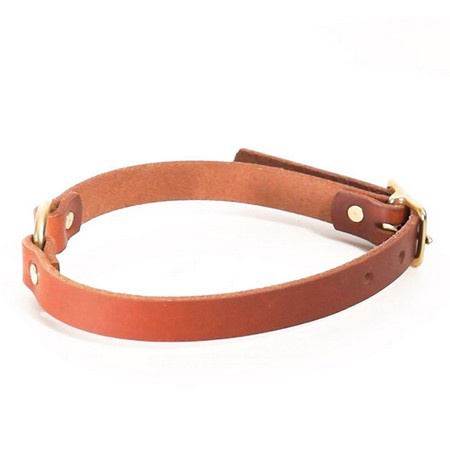 "FieldKing, BTL Bridle Leather Dog Collar, Center Ring, 3/4"" W"