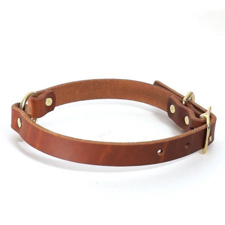 "FieldKing, BTL Bridle Leather Dog Collar, Double Ring, 3/4"" W"