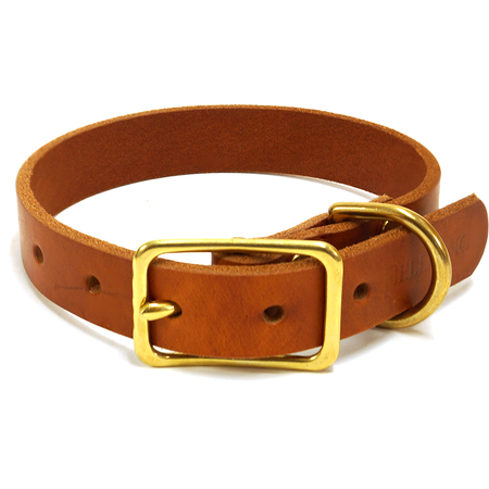 "FieldKing, BTL Bridle Leather Dog Collar, Standard, 1"" W"