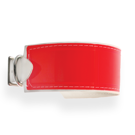FieldKing Field Trial Dog Collar, Red-Orange