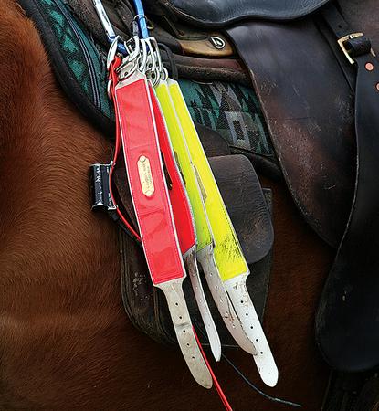 FieldKing Field Trial Dog Collar, Red-Orange