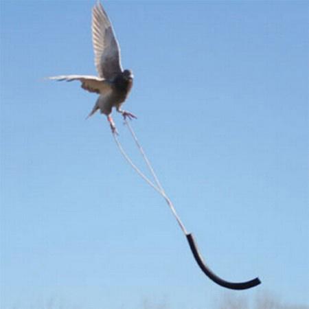 FieldKing Flight Limiter