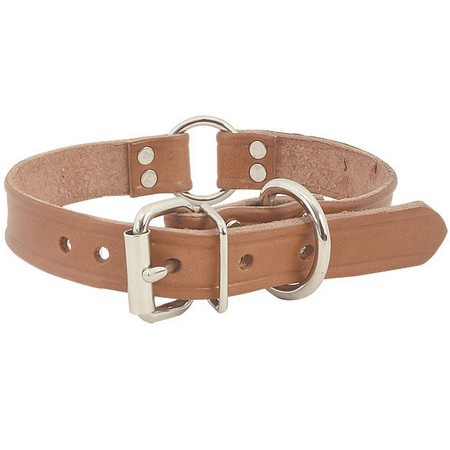 FieldKing Harness Leather Collar, Double Ring