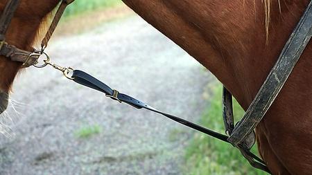 FieldKing, Horse Tie Down Strap, Long