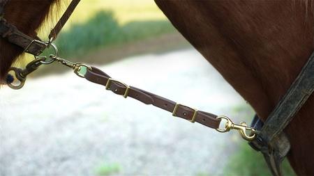 FieldKing, Horse Tie Down Strap, Short