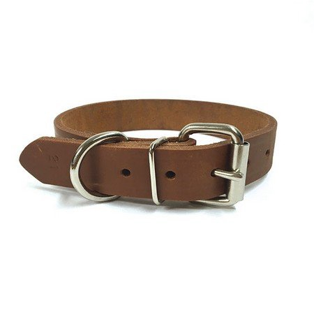 "NBS Leather Dog Collar, Standard, 1"" Wide"