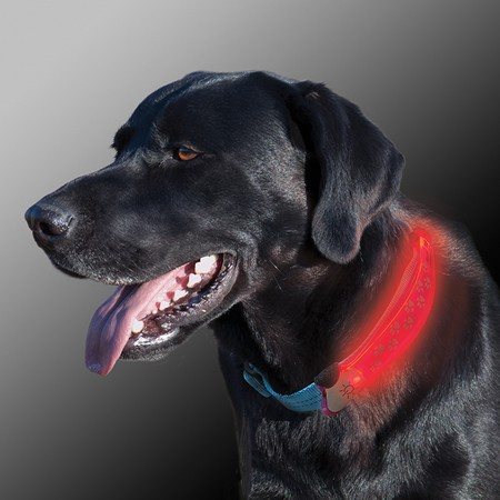 Nite Ize, NiteDawg LED Collar Cover