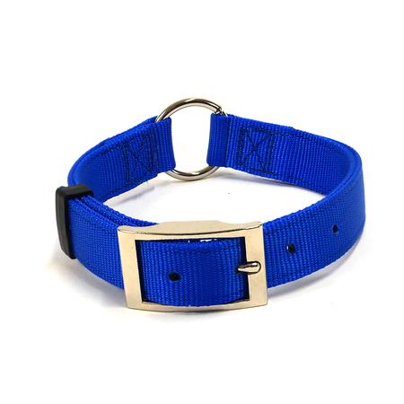 "Nylon Dog Collar, Center Ring, 1"" Wide, Blue"
