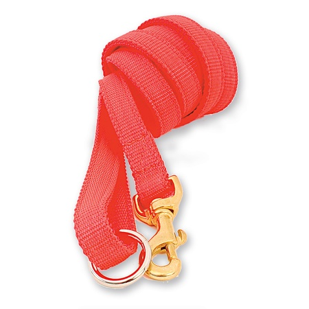 "Nylon Dog Lead, Two Ply, Orange, 72"" Obedience Lead"