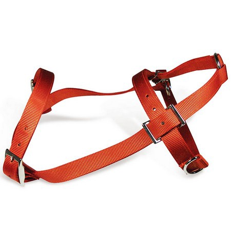 Pulling Harness, Nylon, Orange