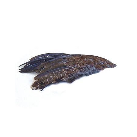 Quail Wings