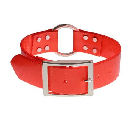 "SunGlo Dog Collar, Center Ring, 1 1/2"" Wide"