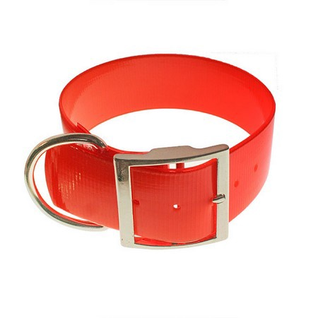 "SunGlo Dog Collar, Standard, 2"" Wide"