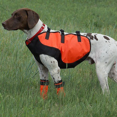 Sylmar, Body Guard Dog Vest, Safety Orange