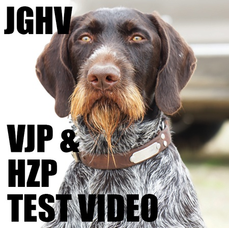VDD-GNA, JGHV VJP, HZP and VGP Test Videos, DVDs